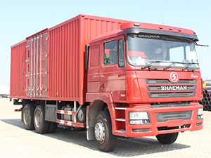 Cargo Truck / SHACMAN F3000 heavy duty cargo truck